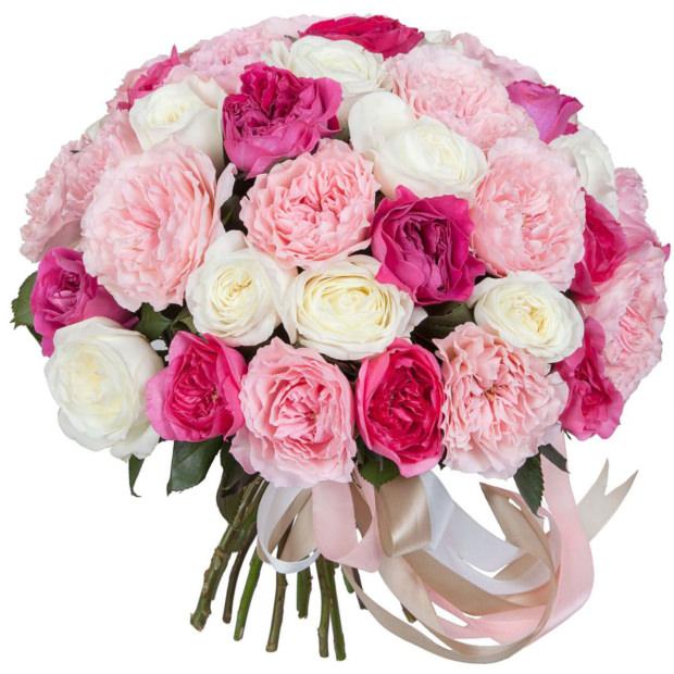 Розы Пионовидные Микс 1